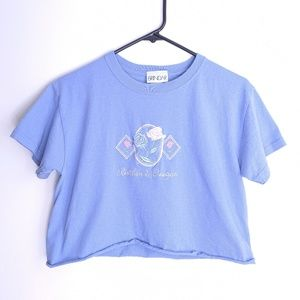 Vintage Periwinkle Cropped Floral Embroidered Tee